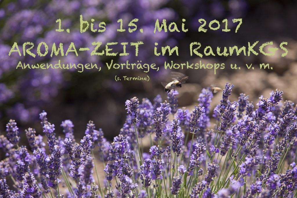 Lavendelbild_Aroma-Zeit